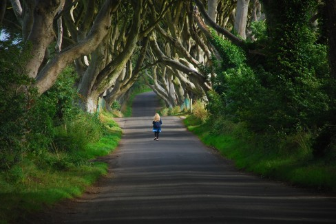 the dark hedges_2